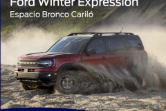 Ford-Winter-Expression-5